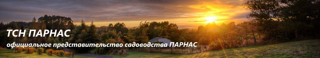 ТСН ПАРНАС